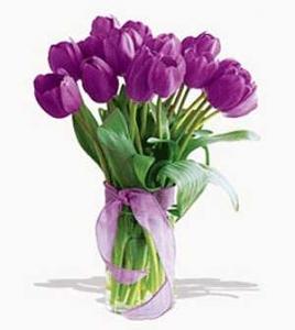 Valentines Flower Delivery To Philippines Send Violet