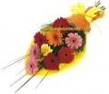 Mixed Colored Gerberas