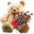 Giant teddy with Rose