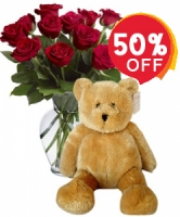 Red rose with teddy
