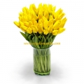 Yellow Tulip in Vase