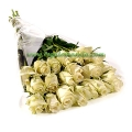 20 Long Stem White  Ecuadorian Roses