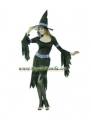 Glamour Witch Costume