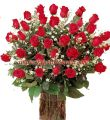 Bright Red Roses